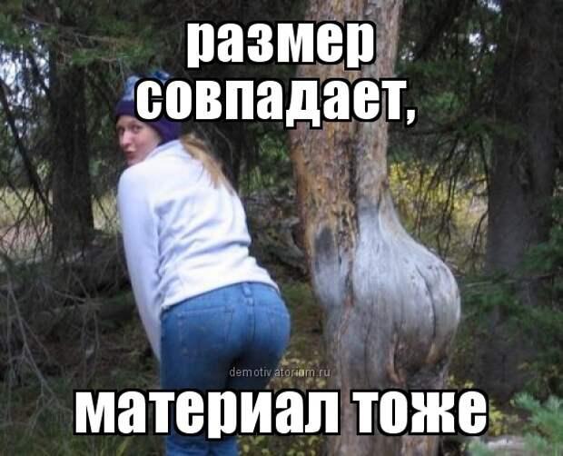 Забавные фотографии и смешные картинки с надписью