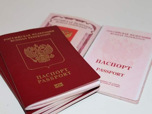 Шесть египтян и три иракца: кто в 2020 году в Удмуртии получил гражданство России