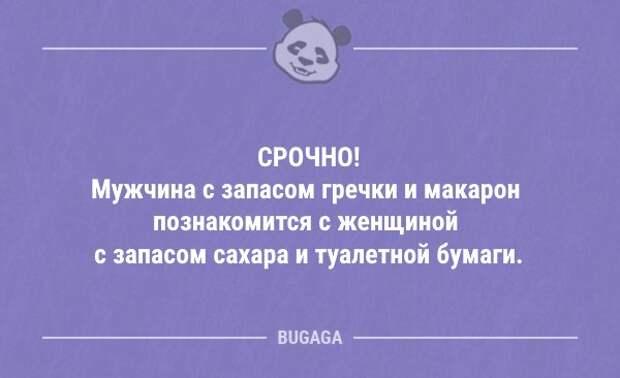 Анекдоты дня (13 шт)