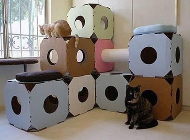 cathouse19 Дизайн для котов