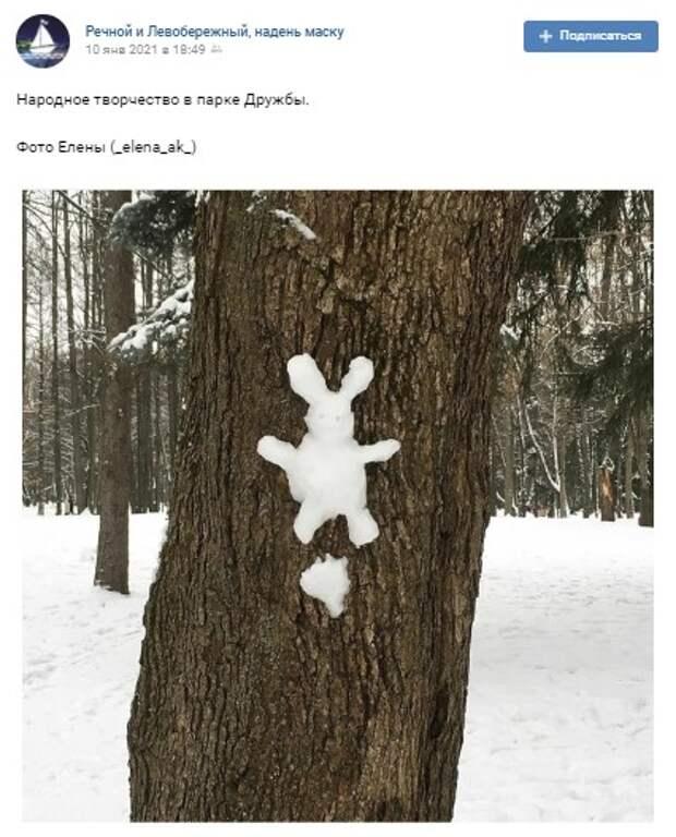 Фото дня: заячий клон «головинского» соседа