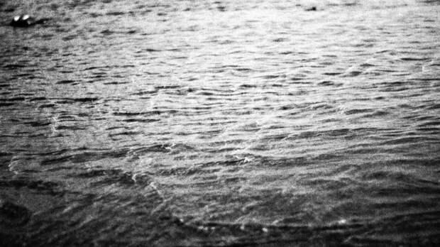 Lexus упал в воду при обрушении моста в Приморье