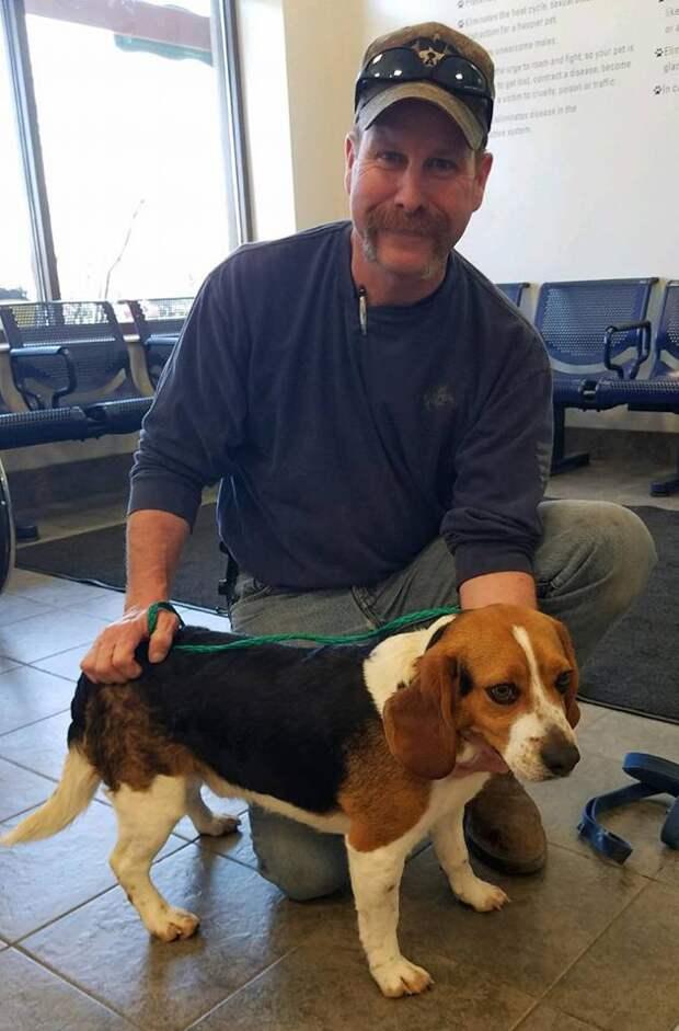 Мужчина спас эту собаку от усыпления и пес теперь постоянно ему благодарен