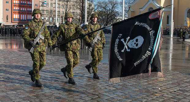 Эстония пригрозила Москве окончательным военным решением «российского вопроса»