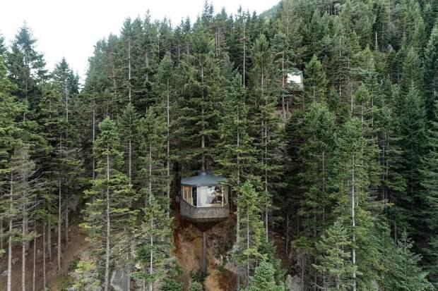 Уникальные домики надеревьях Woodnest парят внорвежском лесу