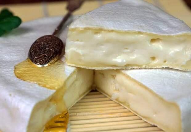 Делаем сами настоящий камамбер: сливочный деликатес из Франции
