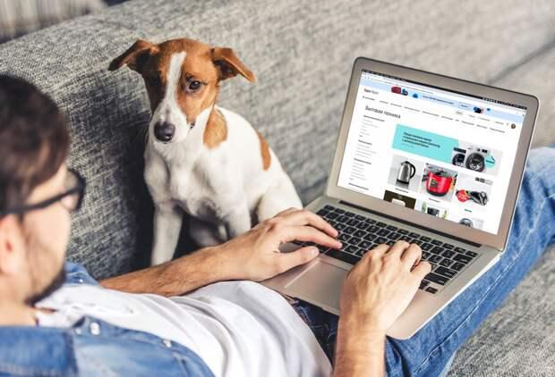 Контактный центр Яндекс.Маркета и маркетплейса Беру на 450 рабочих мест появится в Ижевске