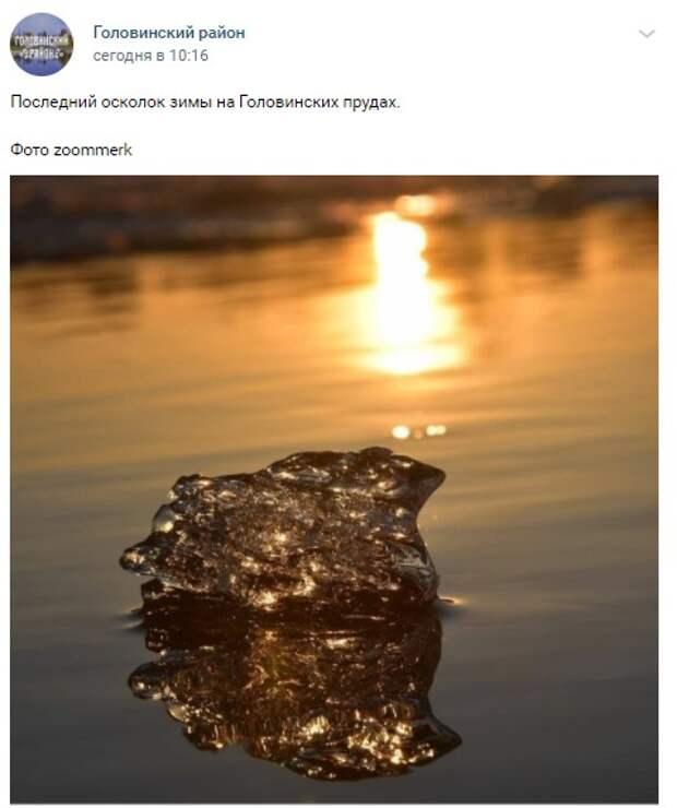 Фото дня: осколок зимы на Головинских прудах