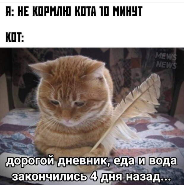 - Михалыч, бухаем сегодня?  - А в честь чего?...