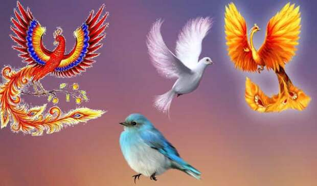 Птица Счастья поведает, какой подарок Судьбы ожидает вас в будущем