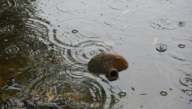 202 приусадебных участка остаются подтопленными в Подмосковье после сильных ливней