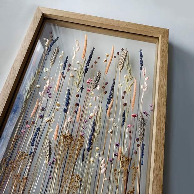 сухоцветы стекло за стеклом колосья