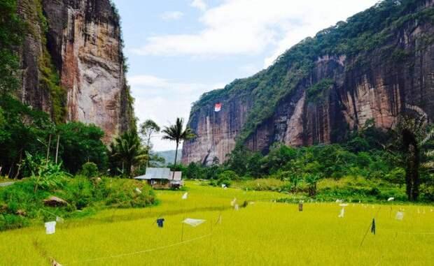Харау Индонезия Расположенная в Западной Суматре долина Харау поражает путешественников красивейшими природными пейзажами Храбрый исследователь наверняка откроет здесь для себя много интересного в долине есть покрытые лесами горы неприступные скалы и даже укромные рисовые поля возделываемые местными фермерами