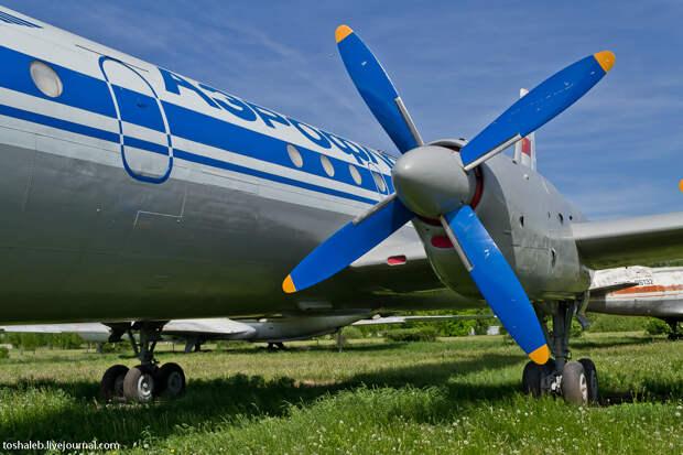 Aviation Museum-39