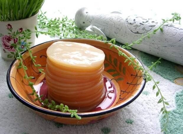 Чайный гриб — польза и вред для здоровья «чайной медузы»