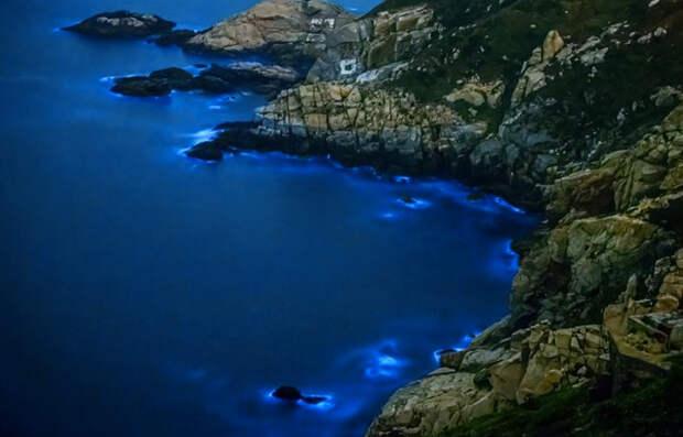 10 самых невероятных заливов мира. Туристы не верят, что они настоящие