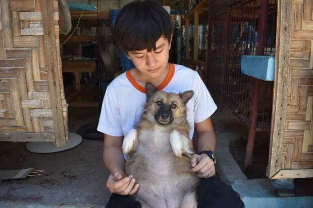 Мальчик тратил карманные деньги на еду для бездомных собак. А в 9 лет открыл приют