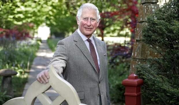 Принц Чарльз выступил за более широкий допуск посетителей в королевские дворцы