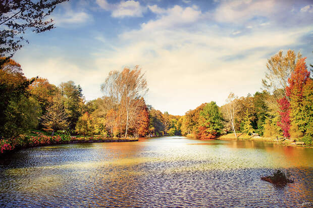 An Autumn Day by Alp Cem on 500px.com