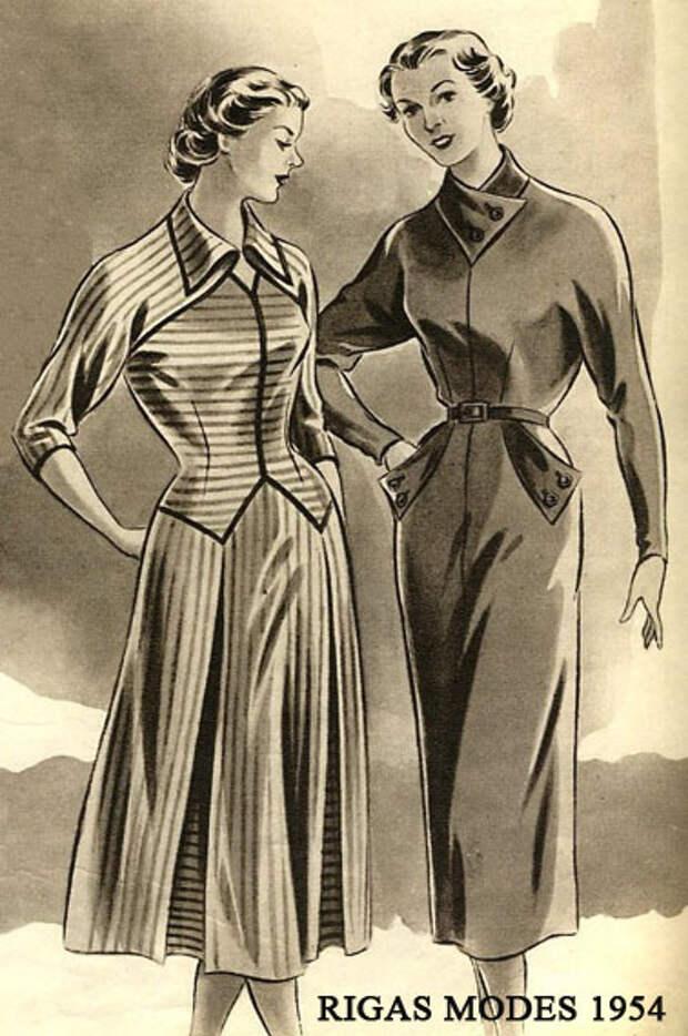Полоска 1954-55