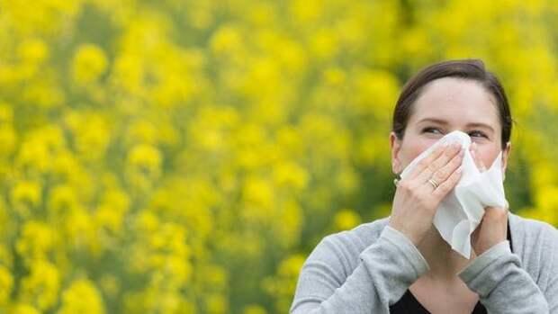 Жители Новосибирска вновь пожаловались на неприятный запах в городе