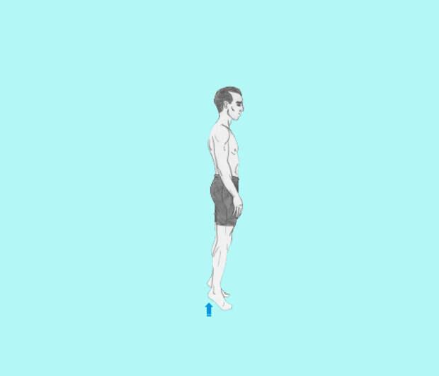 Золотая пятерка: 5 основных упражнений, которые подтягивают все тело