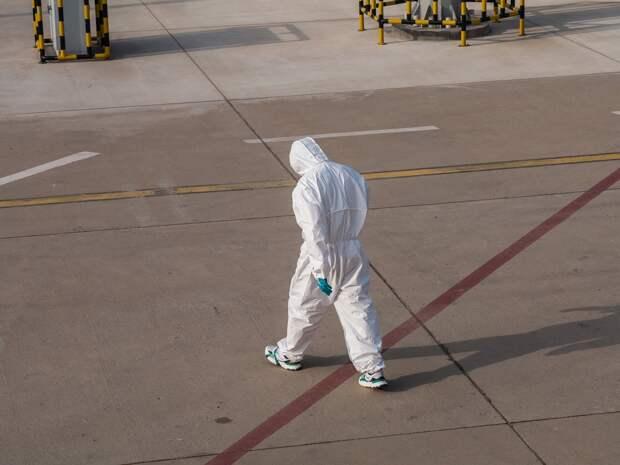 South China Morning Post: Тысячи экзотических животных продавали в Ухане перед вспышкой коронавируса