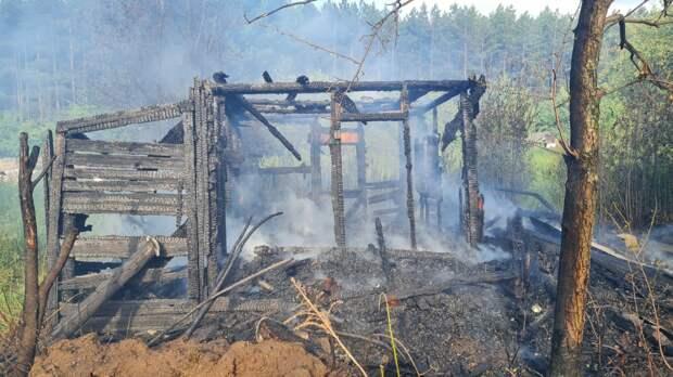 В Ижевске в садовом массиве сгорели три дома