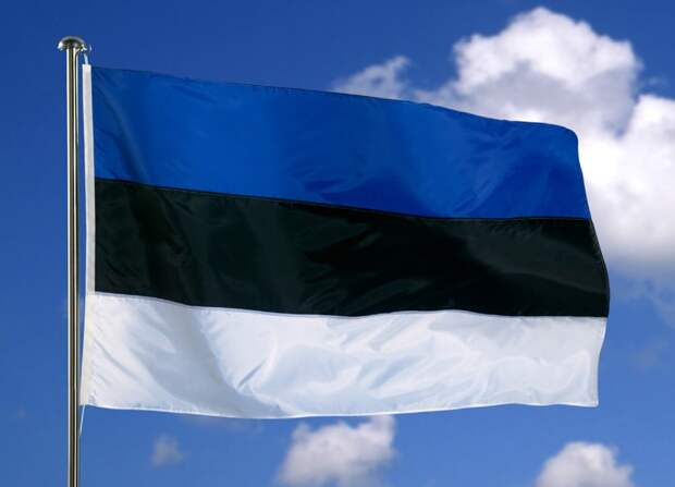 Эстония нанесёт ответный удар, сокрушив экономические планы Кремля