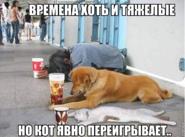 1470040303_smk-34