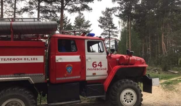 Потерявшиеся влесу подростки 12 и 15 лет из Полевского найдены
