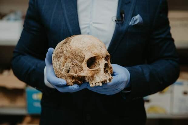 Три черепа и кости нашли на месте бывшей деревни в Увинском районе