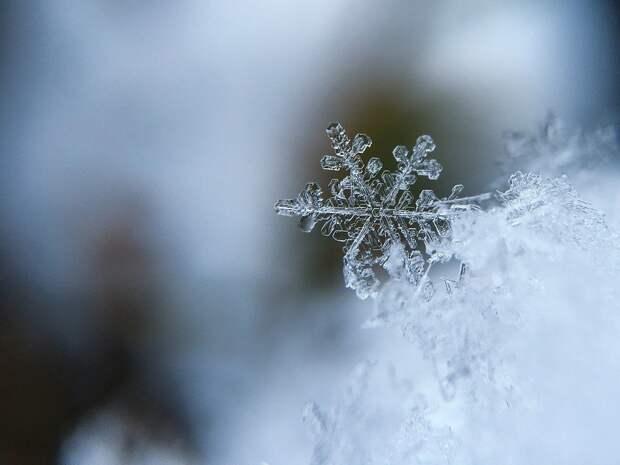 Снежинка, Снег, Кристалла, Снег Кристалл, Холодный