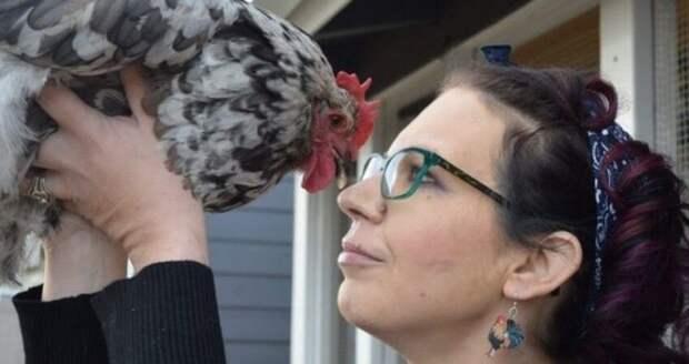 Настоящая дружба: американка заплатила 10 тысяч долларов за лечение любимой курицы