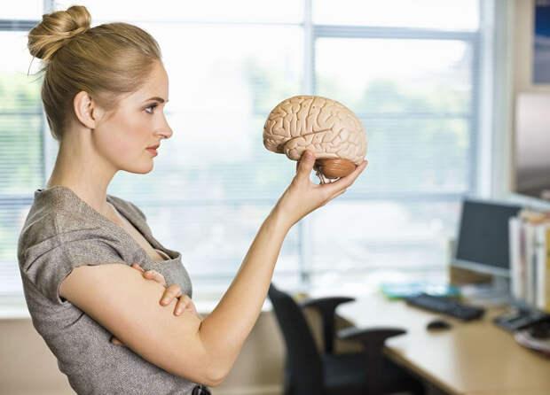 Женский ум и стереотипы прошлых веков: насколько они справедливы с точки зрения психолога?