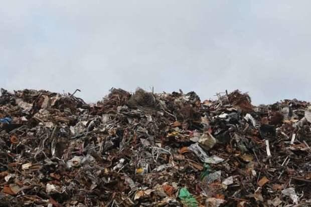 Greenpeace нашла нелегальные свалки британского пластика в Турции
