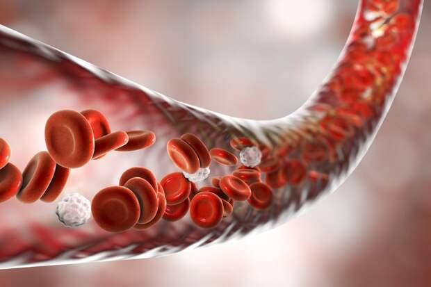 Как умирают эритроциты: когда это — болезнь?