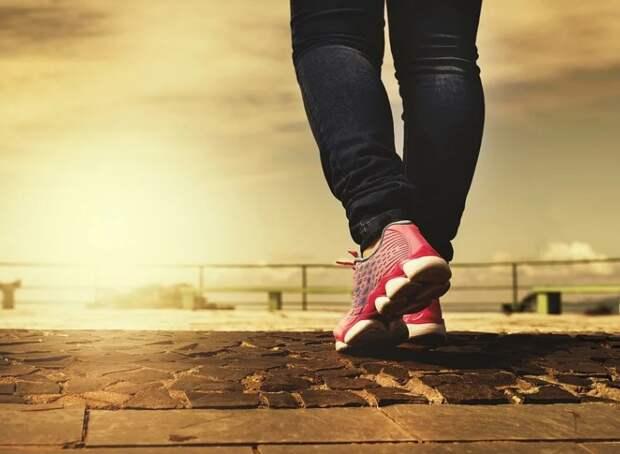 ТЦСО «Южнопортовый» представил сборник упражнений на укрепление мышц ног
