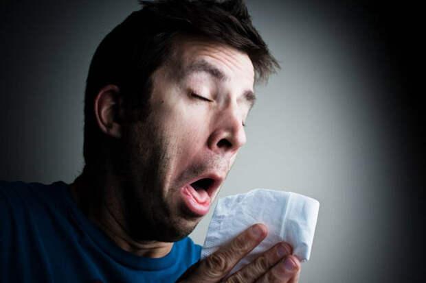 Желать здоровья после чихания