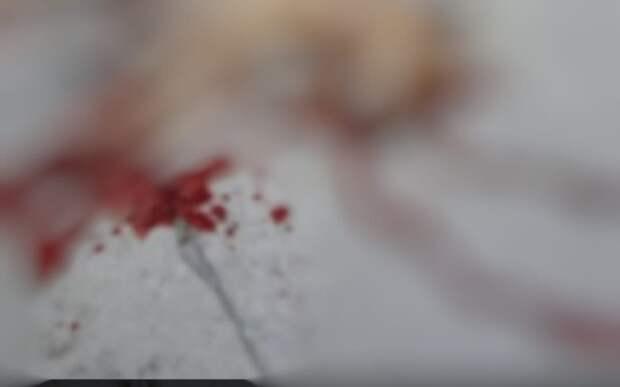 В Касимове неизвестные застрелили собаку