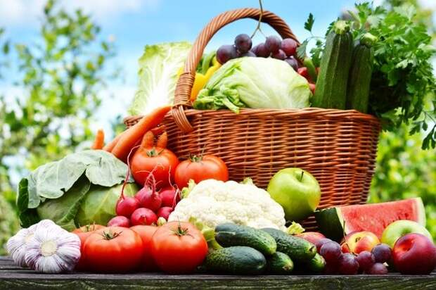 Органическое земледелие: природа научит и поможет