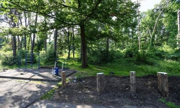 Куда ушли лесные земли воВладикавказе при экс-главе республики