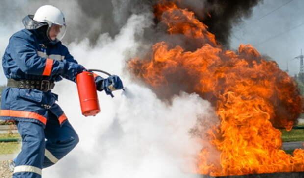 Посетители парка вЕкатеринбурге эвакуированы из-за возгорания тополиного пуха