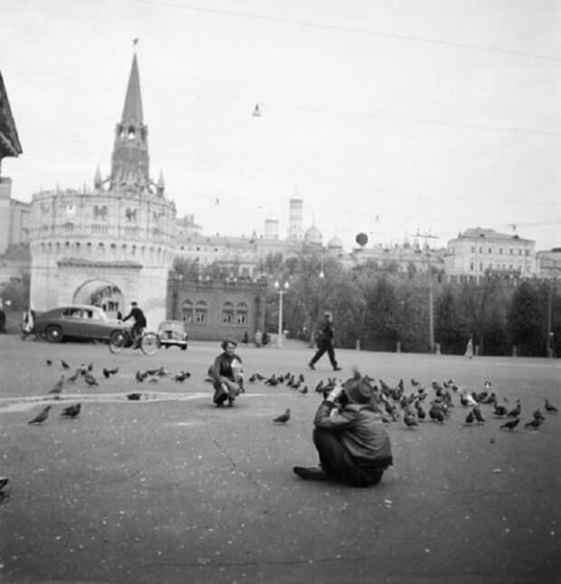 Среди голубей...СССР, Москва, 1950 год.