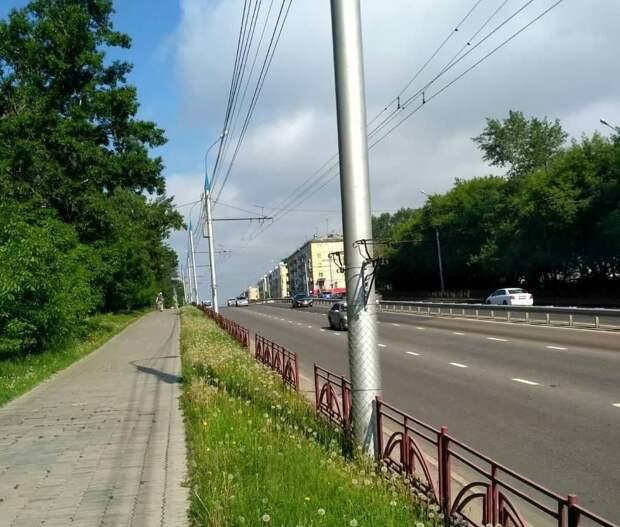 С опор освещения на улице Байкальской в Иркутске украли цветочные вазоны