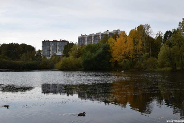 Сентябрь продолжает гореть: фотографии последних теплых дней в Томске и песни, которые вы точно знаете