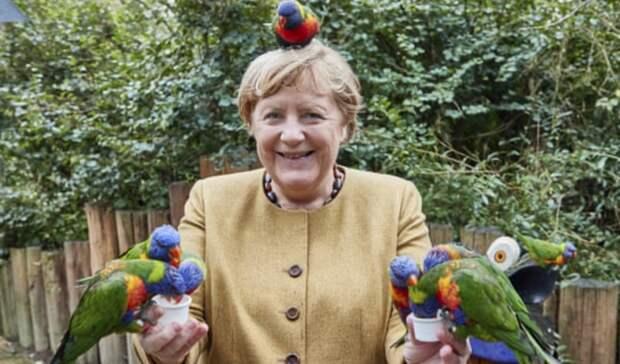 Германию ждет новая коалиция и долгие переговоры после выборов