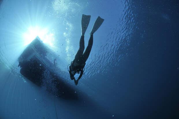 В Сочи поиски сооснователя Skillbox начали водолазы