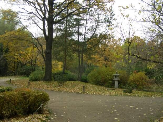 Прогулки по Москве. Осень в Ботаническом саду.