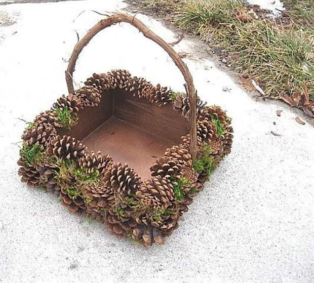 Отправляемся в лес за шишками, такой материал для творчества не должен пропадать!